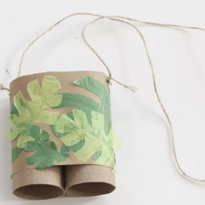 Toilet Paper Roll Crafts 0 (0)