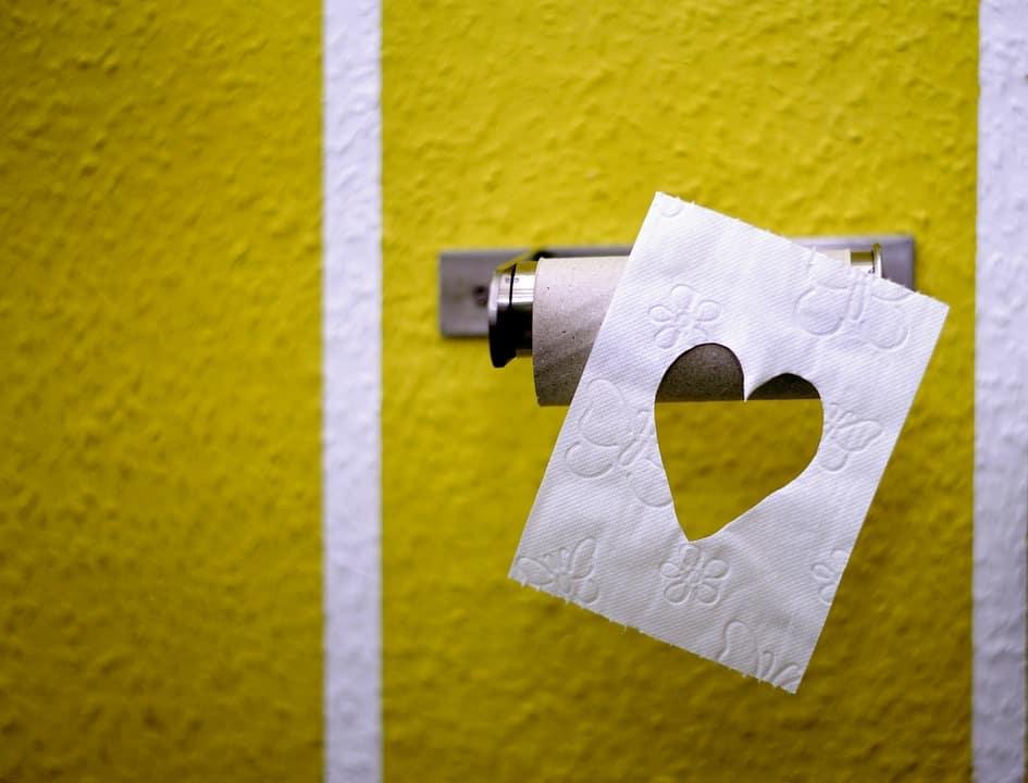 toilet paper 3675180 960 720